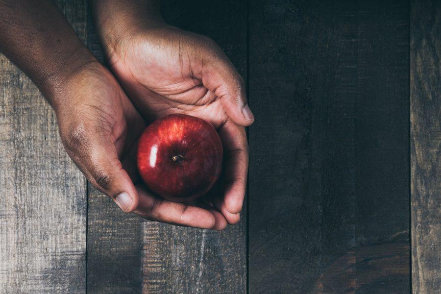 Red apple in hand nicole de khors