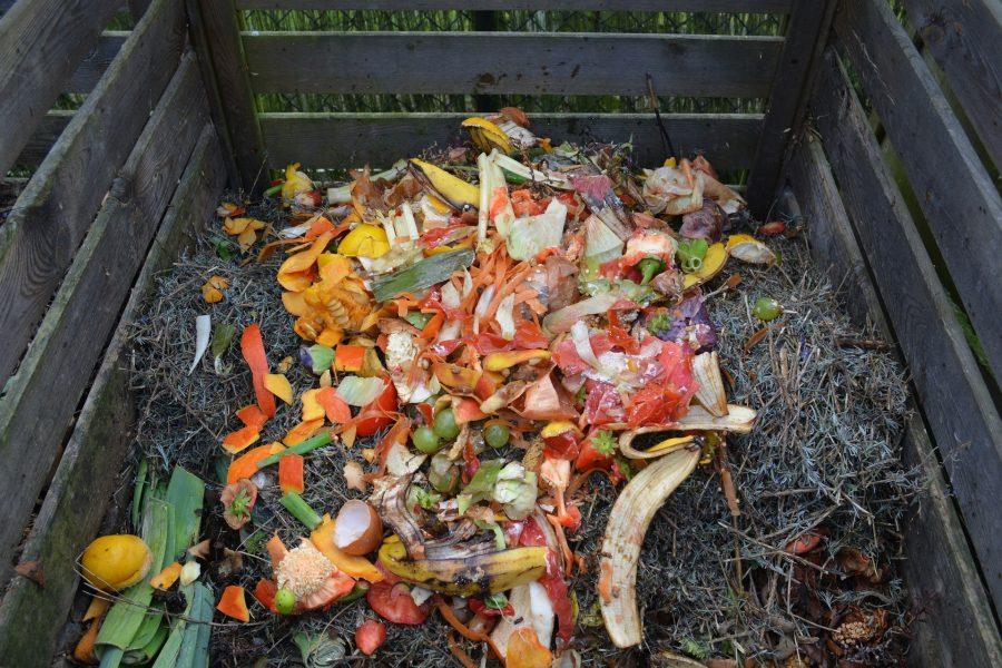 Green waste 513609 1920