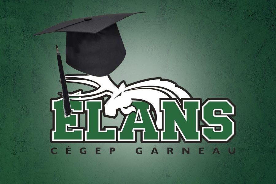 Elans diplome4